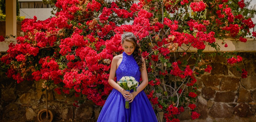 Azul Fifteen